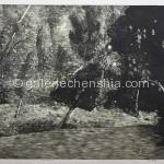 玄观之十二 套色木刻 66X77cm 2012年_副本