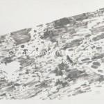 53山地 墨、宣纸40×80cm 2010年_副本