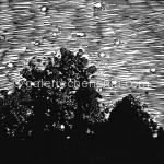 58玄观之二 麻胶版画 19.5×20cm 2011年_副本